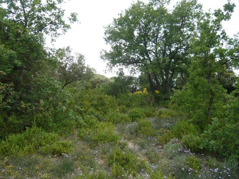 GINASSERVIS terrain constructible 1738m² GINASSERVIS