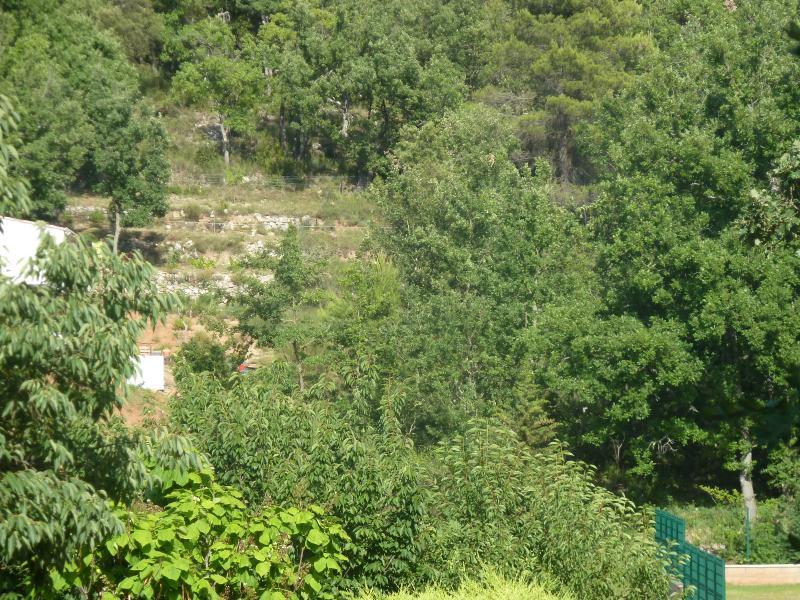 Terrain constructible 3647m² GINASSERVIS GINASSERVIS