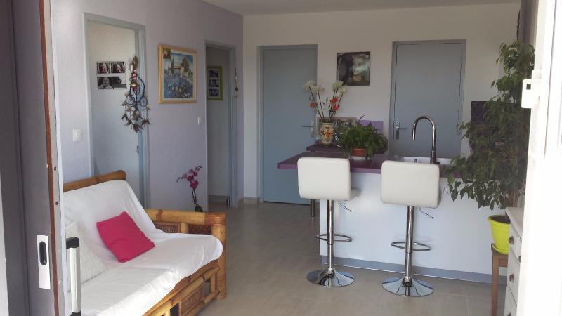 Appartement 2 pièces terrasse GREOUX LES BAINS GREOUX LES BAINS