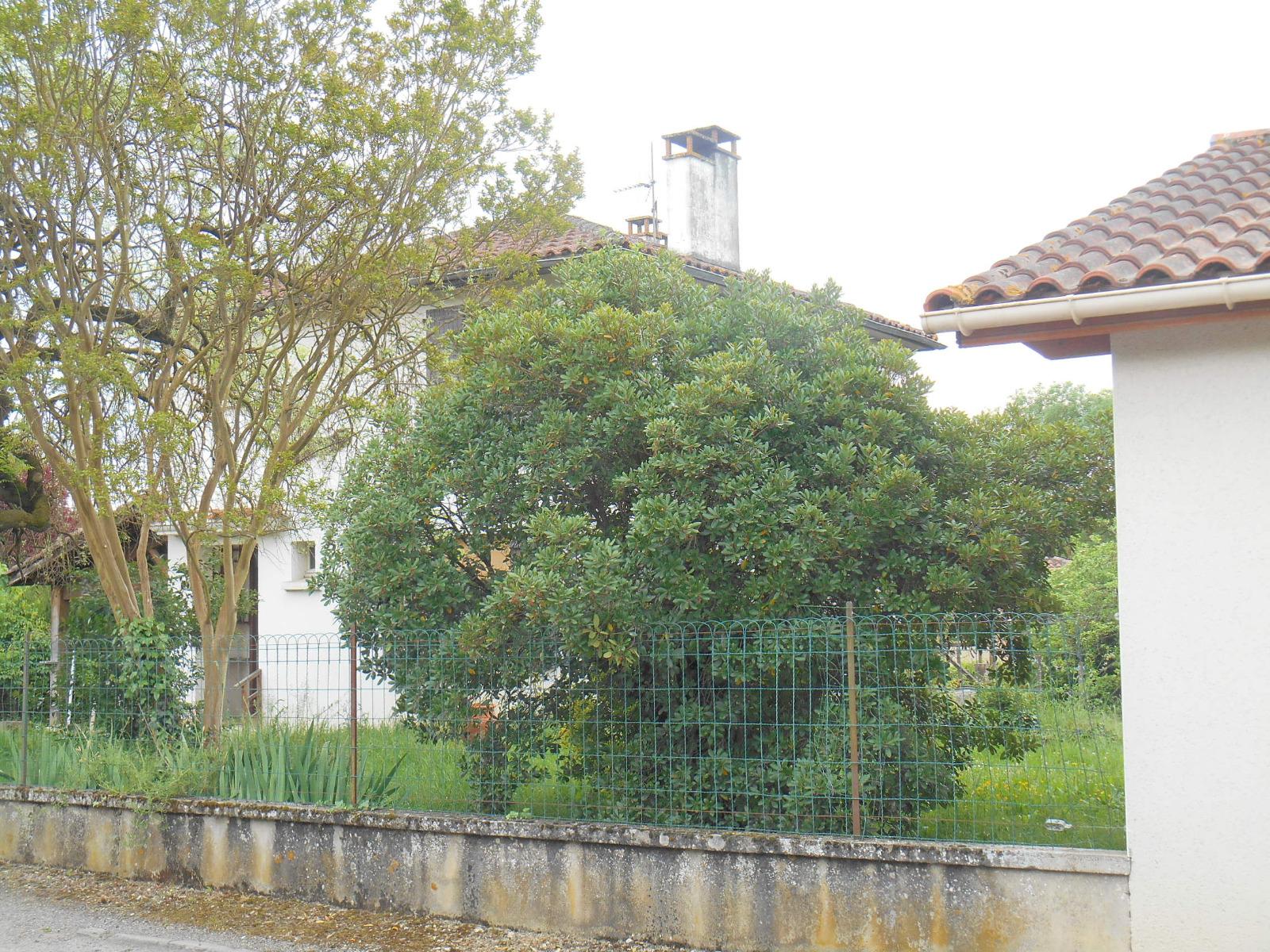 Maison A Vendre Vic Fezensac Centre Ville Avec Jardin