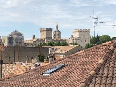 Vue: vue palais des papes depuis terrasse , APPARTEMENT ART-DECO, AVIGNON INTRA-MUROS T3, TERRASSE et CAVE