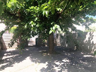 Vue: jardin, VILLA à 8 mn à pied du centre de VAISON-LA-ROMAINE