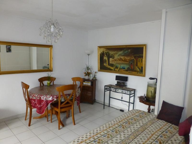 Les ANGLES Appartement  T1 30 M² proche QUARTIER de BELLEVUE