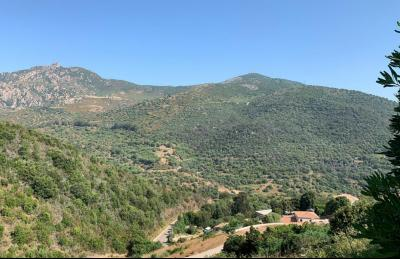 Terrain Salario