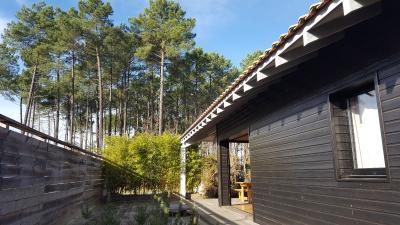 Vue forêt maison bois d'architecte 76m2 grande terrasse bois