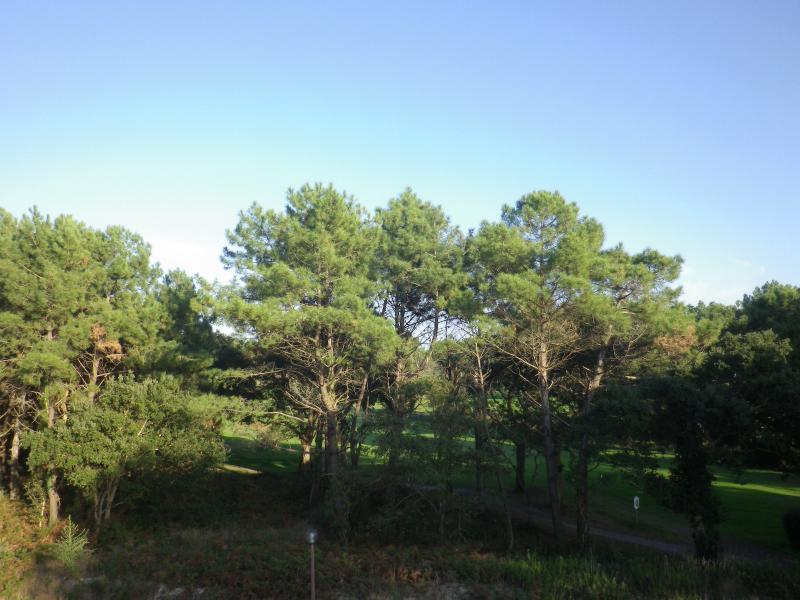 Vente Vue Golf et forêt beau T3 de 56m2 terrasse sud et est 24 m2 piscine