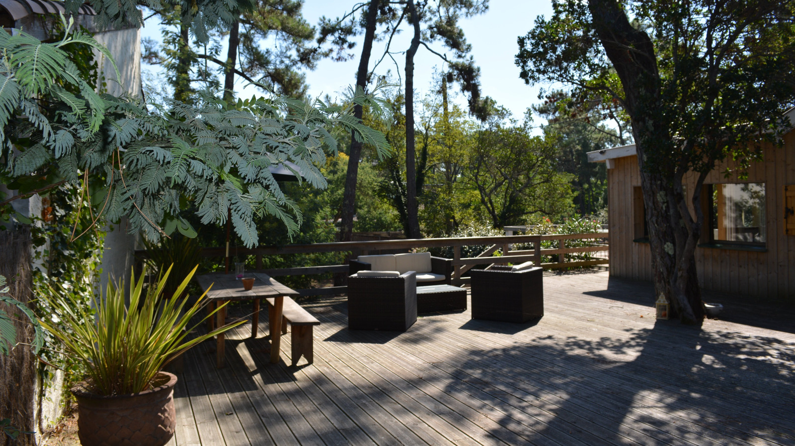 Cap ferret 44 hectares maison r nov e style cabane for Belles maisons du bassin