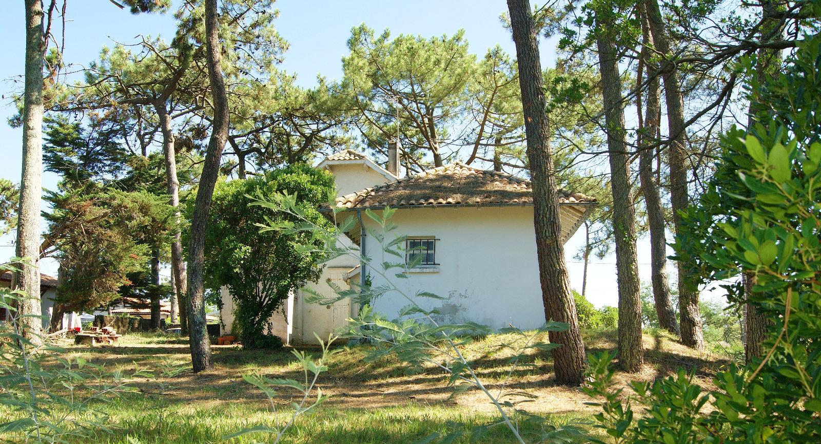 Presqu 39 le du cap ferret le canon maison proche plage et for Belles maisons du bassin