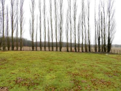Secteur MERVANS (71), vends maison familiale 110 m² env. + dépendances, sur terrain 5500 m², VUE TERRAIN