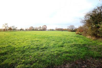 ST GERMAIN DU BOIS, à vendre ferme bressane rénovée de 7 pièces sur terrain de 8000 m²., Terrain 8000 m²