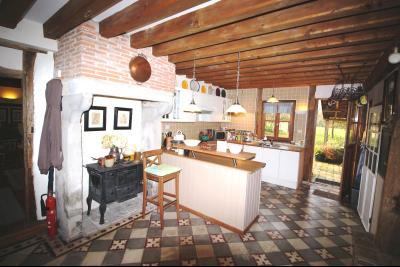 ST GERMAIN DU BOIS, à vendre ferme bressane rénovée de 7 pièces sur terrain de 8000 m²., Cusine / Séjour