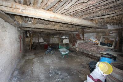 Pierre-de-Bresse (71270) à vendre maison à la campagne avec dépendance sur 8000 m² de terrain.,