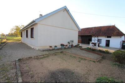 Pierre-de-Bresse (71270) à vendre maison à la campagne avec dépendance sur 8000 m² de terrain., Vue d