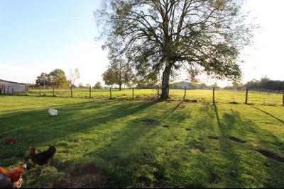 Pierre-de-Bresse (71270) à vendre maison à la campagne avec dépendance sur 8000 m² de terrain., Terrain 8000 m²