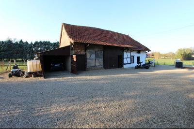 Pierre-de-Bresse (71270) à vendre maison à la campagne avec dépendance sur 8000 m² de terrain., Dépendance environ 131 m²