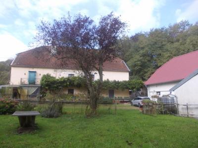 Proche Dole, vends ancien Moulin ( 1280 ) de 12 pièces, 450m² habitable sur 20000m² de terrain clos., vue depuis verger