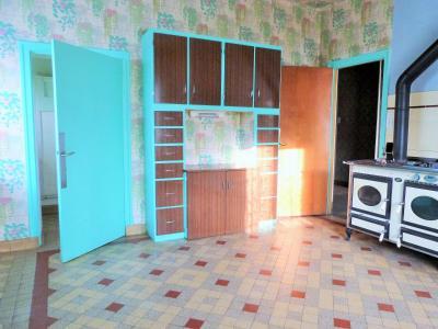 LONS-le-SAUNIER 18km JURA Vends Maison de Maître 255m²env. idéale chambres hôtes,activité artistique, De belles terrasses entourent la maison