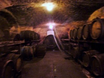 LONS-le-SAUNIER 39 JURA à 20km- Vends demeure de caractère dans beau village viticole sur 4750m²env., Grande cave voûtée