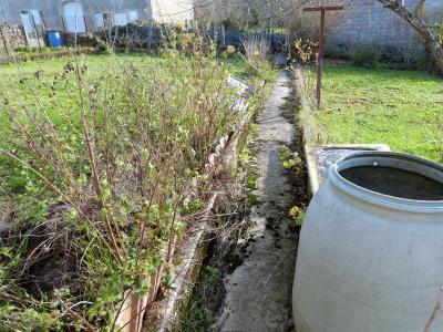 ORGELET JURA 39 11km Vends Ancienne FERME en pierres -à rénover-(vastes dépendances,jardin, verger), Jardin