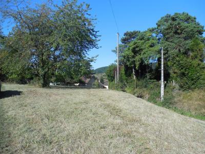 Vriange, 39700, magnifique terrain dominant de 1200 m² constructible, viabilisable,