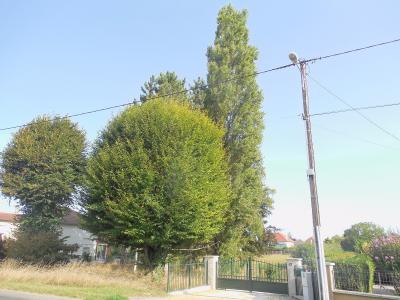 PARCEY, 39100, A vendre terrain constructible de 3054 m² arboré centre village,