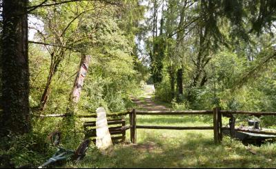 Jura, Région des lacs. Rare ! Propriété équestre 4 ha site idyllique, proche lac de Vouglans., Petit chemin sur la propriété