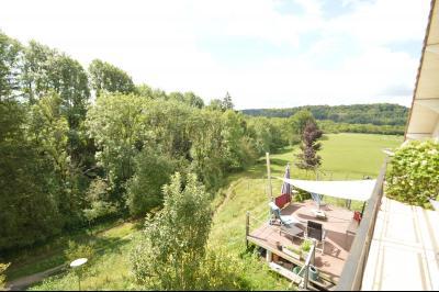 Jura, Région des lacs. Rare ! Propriété équestre 4 ha site idyllique, proche lac de Vouglans., Vue sur la terrasse et les prés