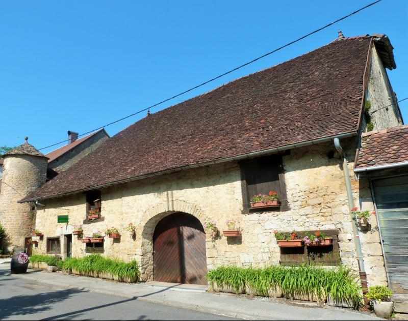 LONS-le-SAUNIER 39 JURA � 20km- Vends demeure de caract�re dans beau village viticole sur 4750m�env.