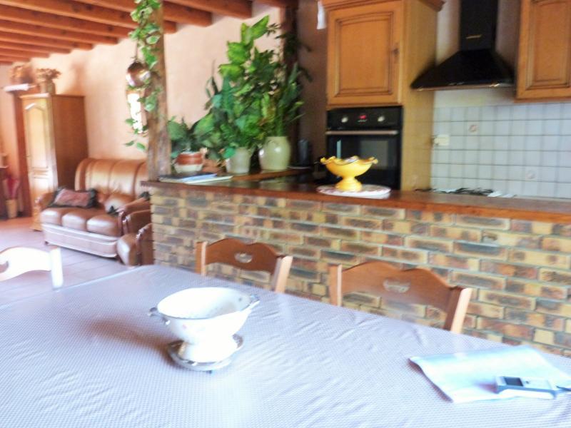 Espace cuisine de la pièce à vivre