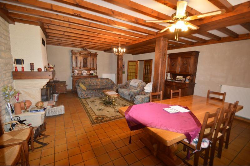 Séjour salon 34 m² avec cheminée