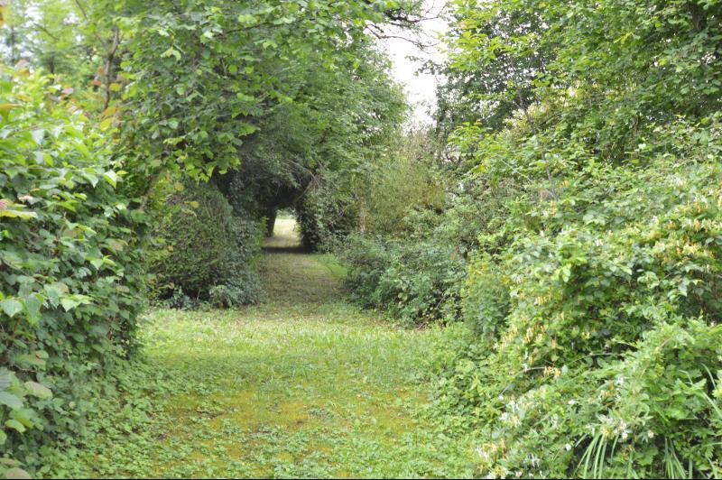 partie du jardin