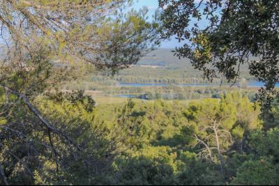 BEAUMONT DE PERTUIS Terrain Boisé de plus de 10 hectares