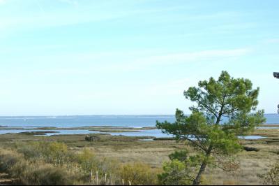 Vue panoramique BASSIN