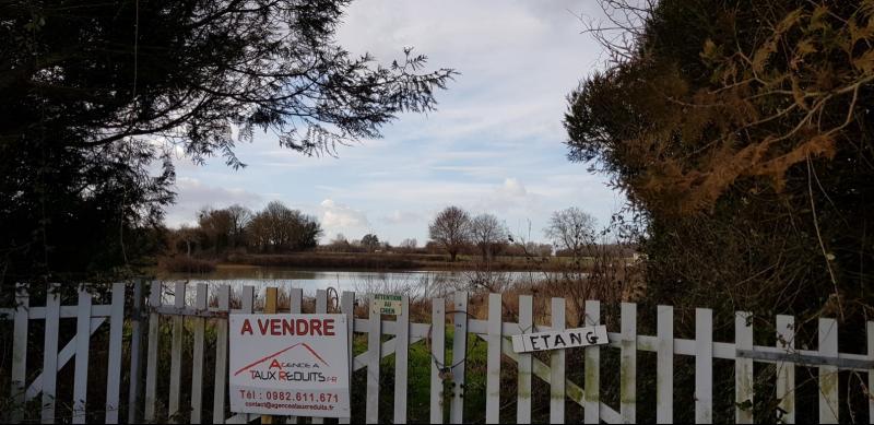 Etang Proche Chatillon sur Loire