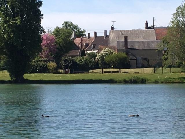 Maison avec grange accès et vu direct sur l étang