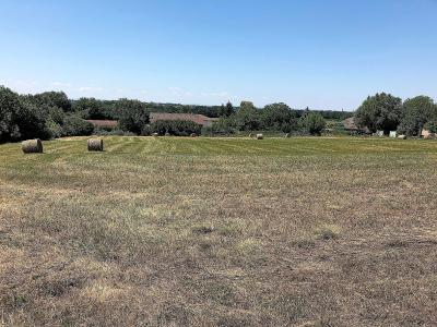 Foissiat proche du lac et de Montrevel - A vendre belle parcelle constructible - 15 000 m²