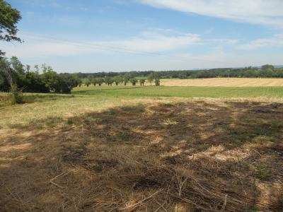 Malafretaz - A vendre joli terrain - 1791 m² non viabilisé -