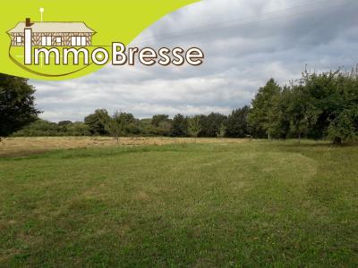 Boissey - A vendre terrain constructible de 1 197 m²