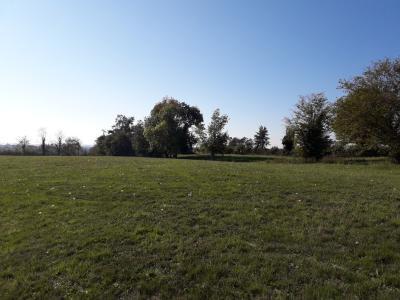 Saint Cyr sur Menthon - A vendre terrain hors lotissement 1439 m²