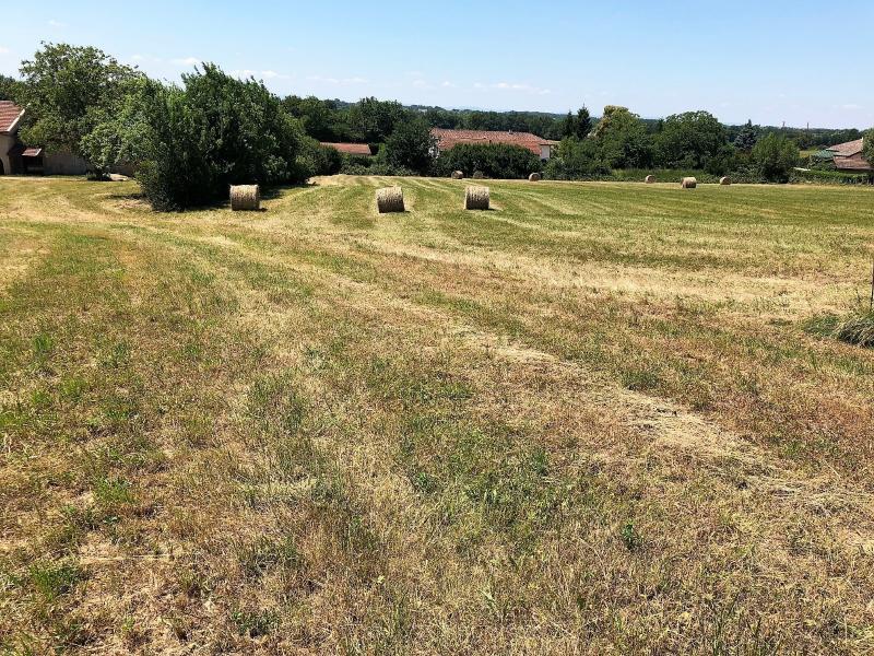 Foissiat proche du lac et de Montrevel - A vendre belle parcelle constructible - 8 550 m²