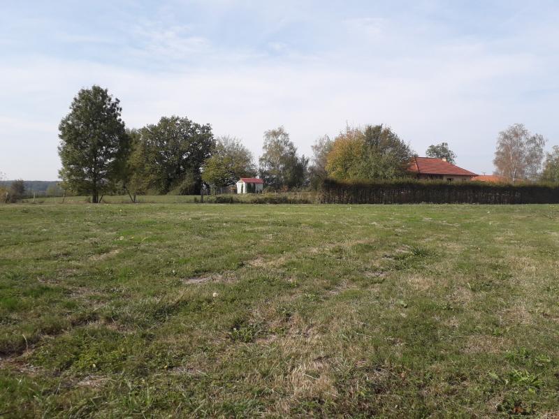 Marsonnas - A vendre terrain 2769 m² hors lotissement