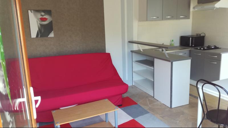 Vente  Maison une pièce sur 156m² de jardin clos Gien 45 Loiret
