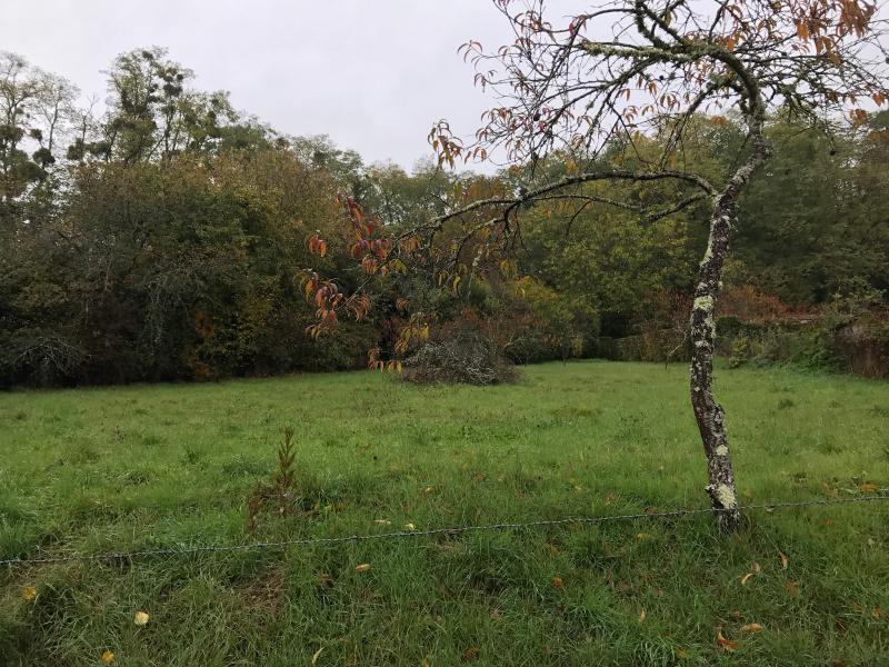 Vente  terrain constructible de 825 m² plat Chatillon Sur Loire 45 Loiret