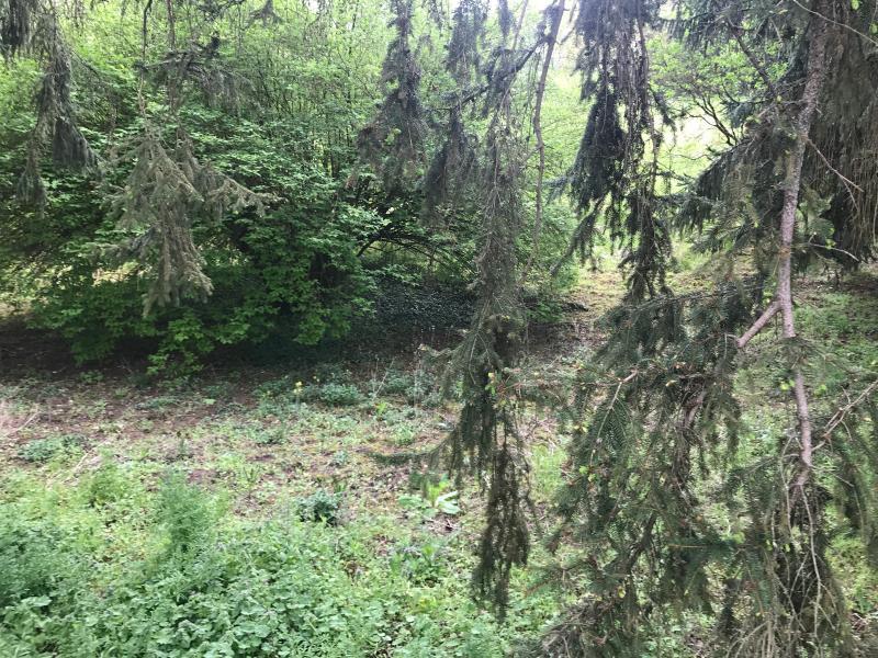 Vente  terrain constructible de 4895m² divisible Gien 45 Loiret