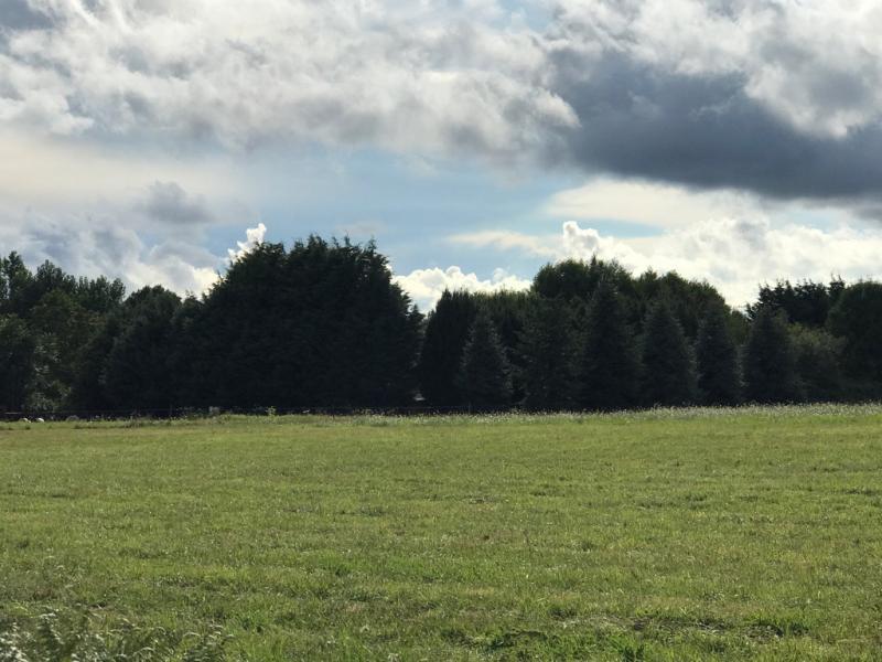 Vente  terrain constructible  de 1104 m² Nevoy 45 Loiret