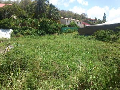 Le Robert (97231), Terrain plat de 736 m² avec vue dégagée Agence Accord Immobilier, Martinique