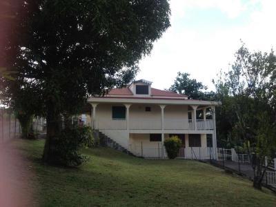 LA TRINITE (97220), Villa F4 ET F3,  au calme avec une vue dégagée mer et campagne Agence Accord Immobilier, Martinique