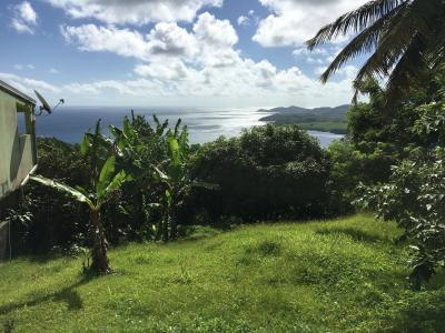 La trinité (97220), terrain de 483 m2 avec une magnifiquev ue mer Agence Accord Immobilier, Martinique