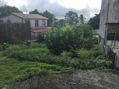 Le Vert-Pré (97231), Terrain dans le bourg de 251 m2 Agence Accord Immobilier, Martinique