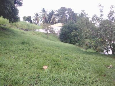 TERRAIN -  LA TRINITE - 730 m² Agence Accord Immobilier, Martinique